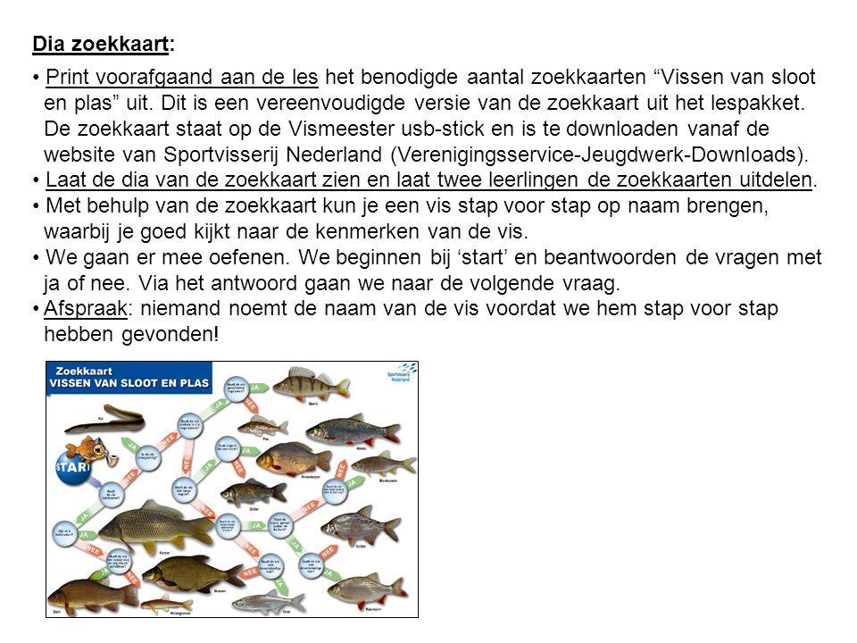 """Dia zoekkaart: Print voorafgaand aan de les het benodigde aantal zoekkaarten """"Vissen van sloot en plas"""" uit. Dit is een vereenvoudigde versie van de z"""