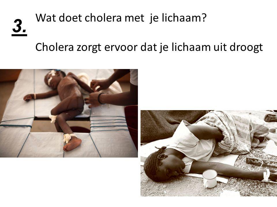 Wat doet cholera met je lichaam? Cholera zorgt ervoor dat je lichaam uit droogt 3.