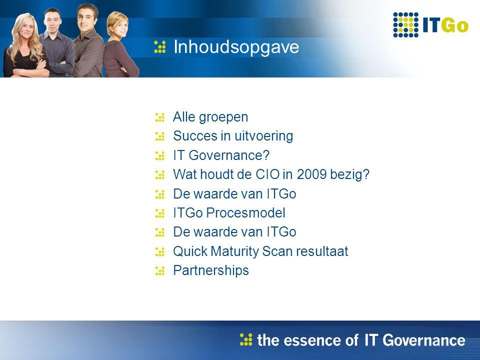 Alle groepen Succes in uitvoering IT Governance. Wat houdt de CIO in 2009 bezig.