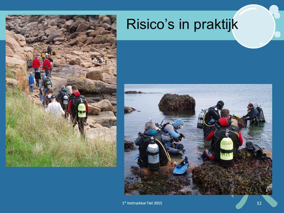 1* Instructeur Tiel 2015 12 Risico's in praktijk