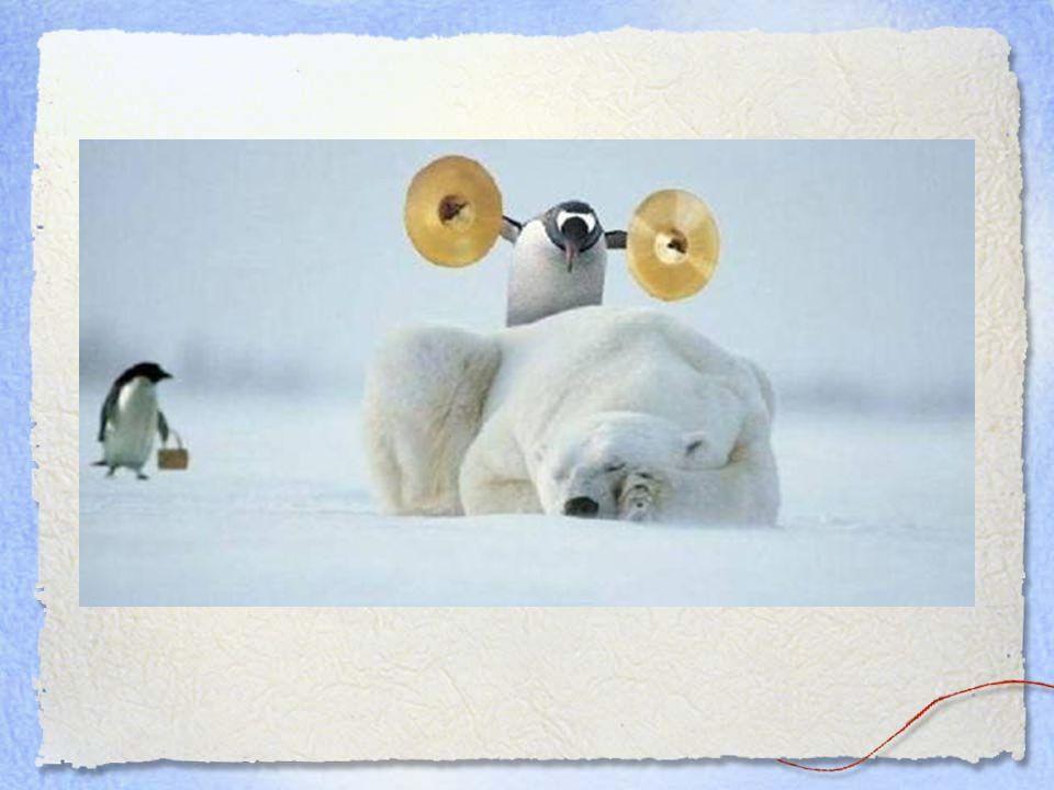 Veel Geluk... Moge je alijd liefde te delen hebben, gezondheid in reserve, En bezorgde vrienden. Maar let op voor de geniepige pinguins!