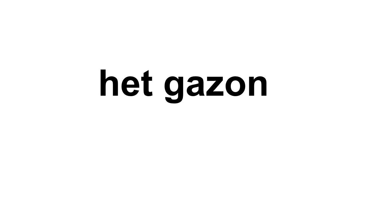 het gazon
