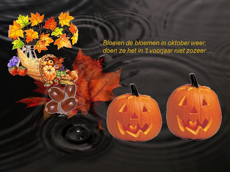 Is oktober warm en fijn, het zal een scherpe winter zijn..