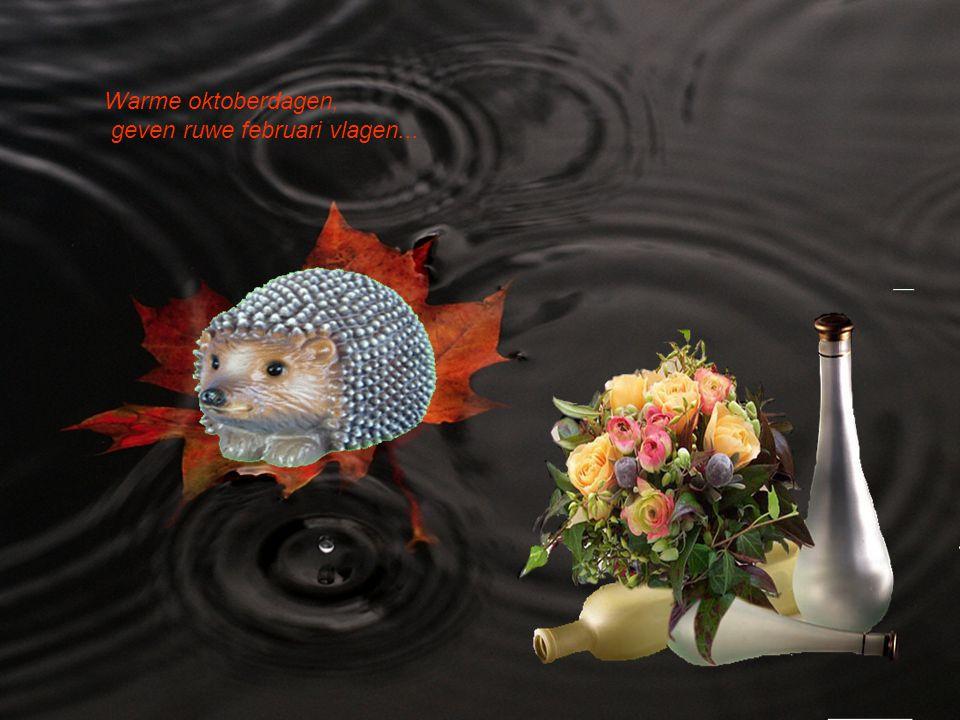 Bloeien de bloemen in oktober weer, doen ze het in t voorjaar niet zozeer...