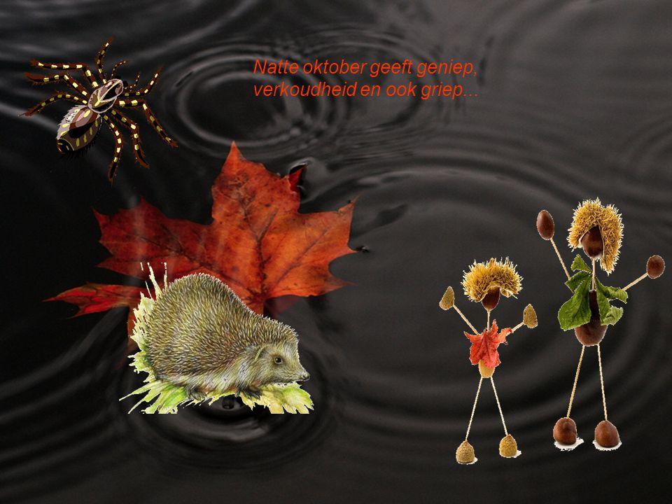 De herfst met nevel doortrokken, toont een winter met vlokken….
