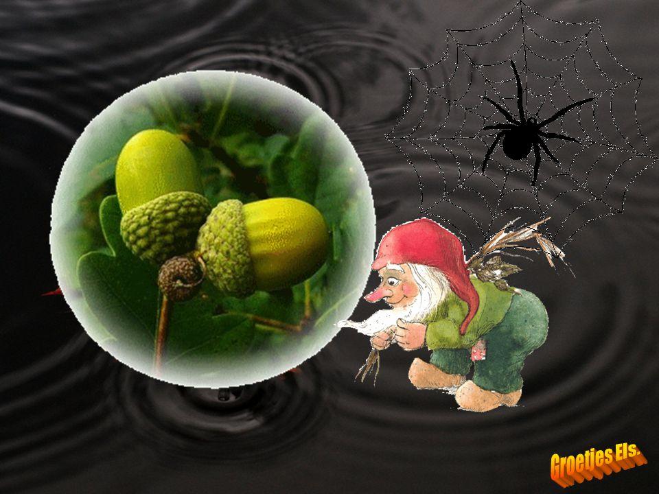 Natte oktober geeft geniep, verkoudheid en ook griep...