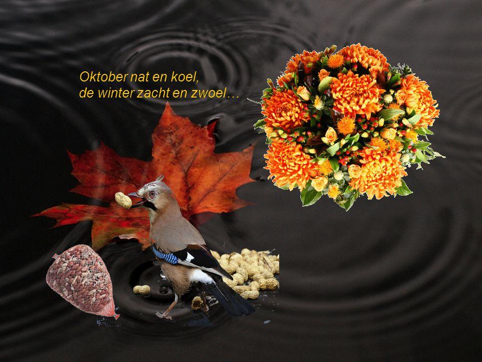 Oktober nat en koel, de winter zacht en zwoel…