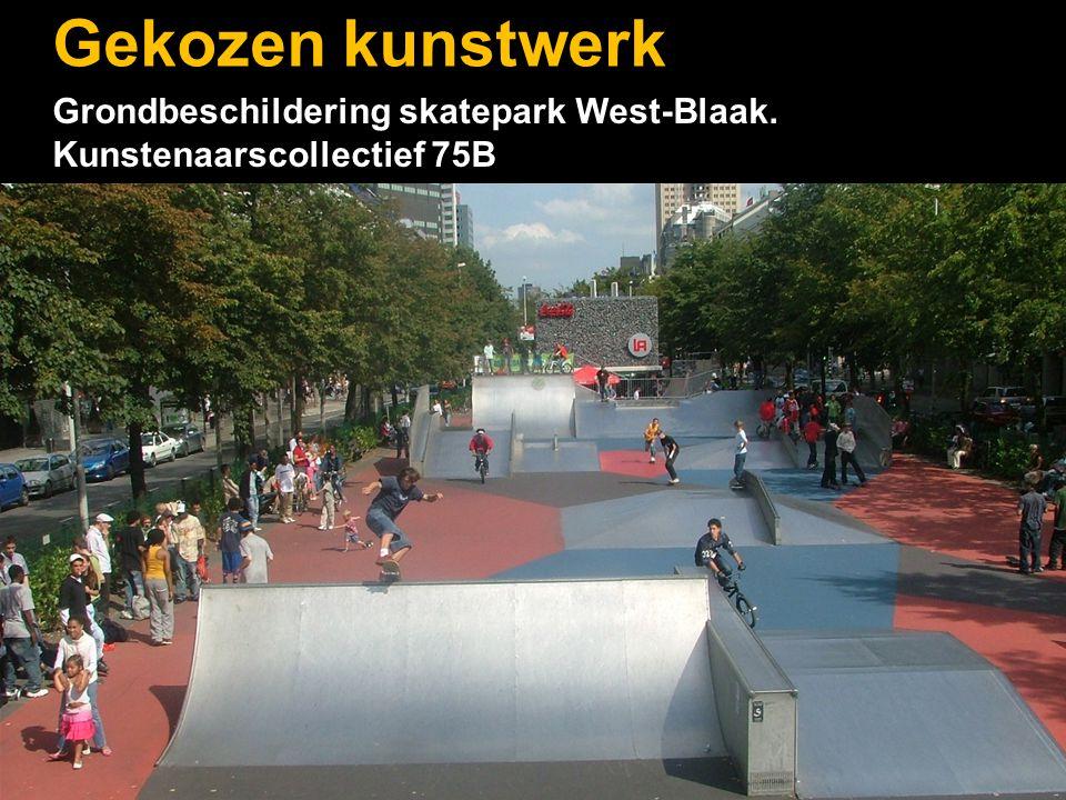 Gekozen kunstwerk Grondbeschildering skatepark West-Blaak. Kunstenaarscollectief 75B