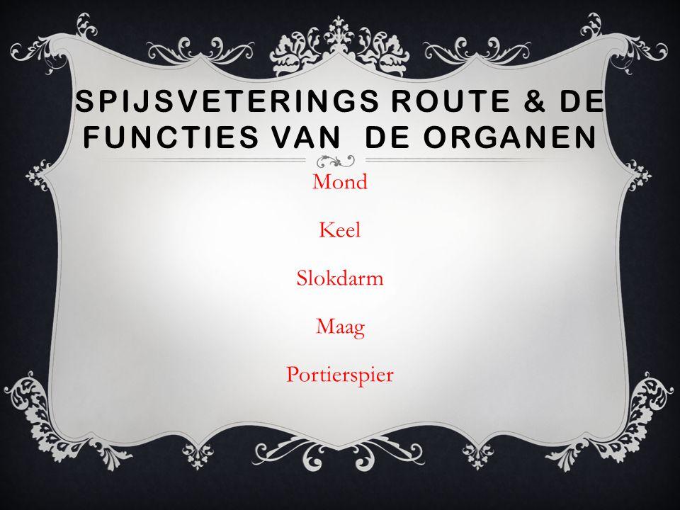 SPIJSVETERINGS ROUTE & DE FUNCTIES VAN DE ORGANEN Mond Keel Slokdarm Maag Portierspier
