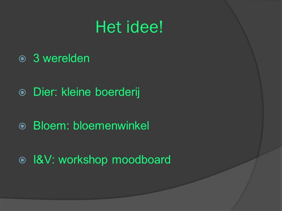 Het idee!  3 werelden  Dier: kleine boerderij  Bloem: bloemenwinkel  I&V: workshop moodboard