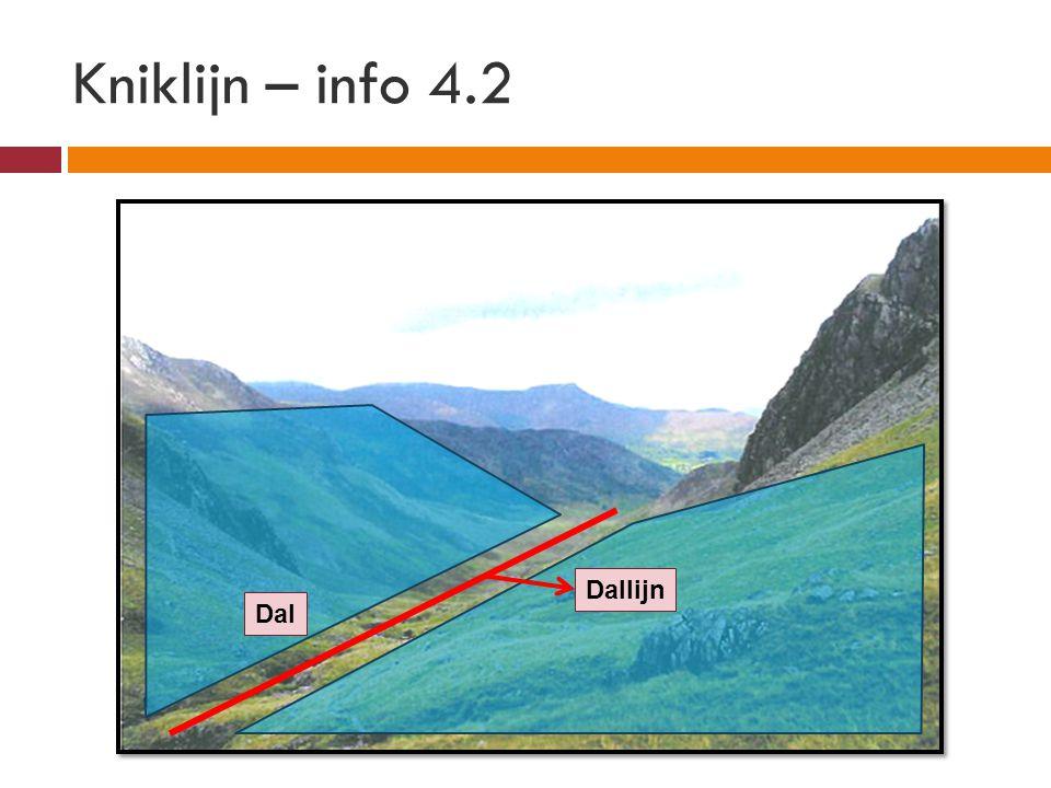 Dallijn