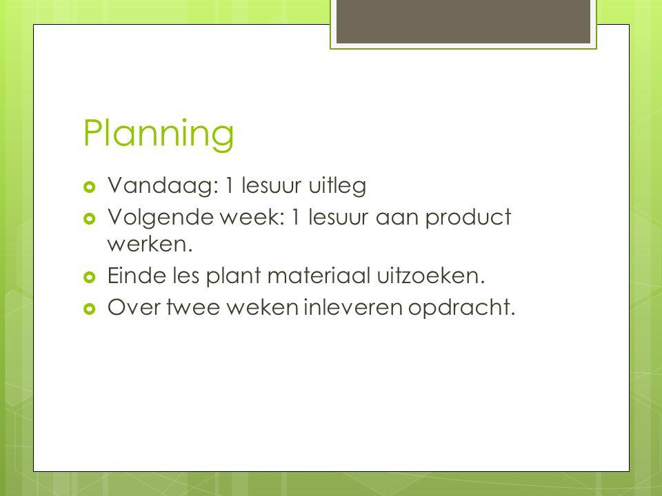 Planning  Vandaag: 1 lesuur uitleg  Volgende week: 1 lesuur aan product werken.  Einde les plant materiaal uitzoeken.  Over twee weken inleveren o