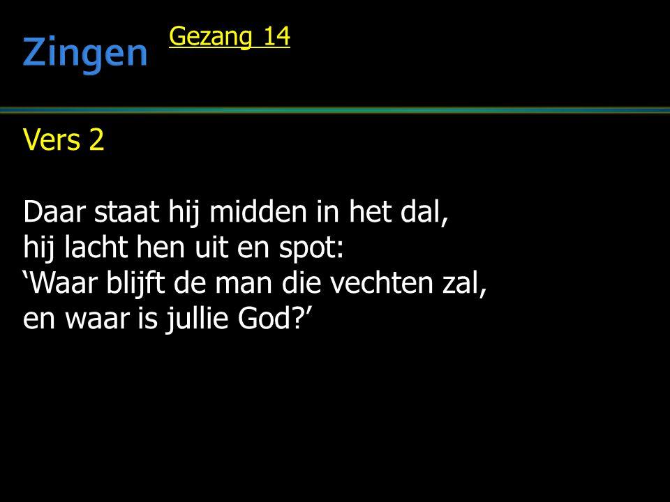 Vers 2 Daar staat hij midden in het dal, hij lacht hen uit en spot: 'Waar blijft de man die vechten zal, en waar is jullie God?' Gezang 14