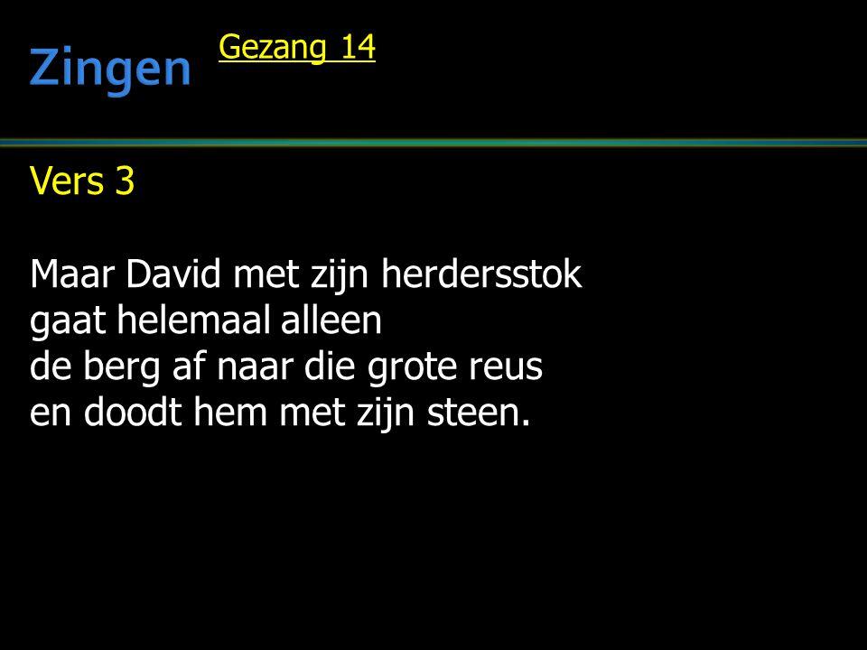 Vers 3 Maar David met zijn herdersstok gaat helemaal alleen de berg af naar die grote reus en doodt hem met zijn steen.