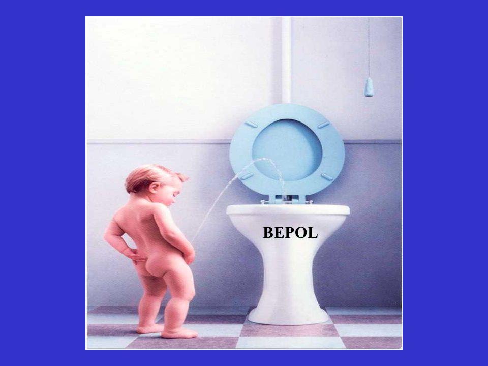 BEPOL