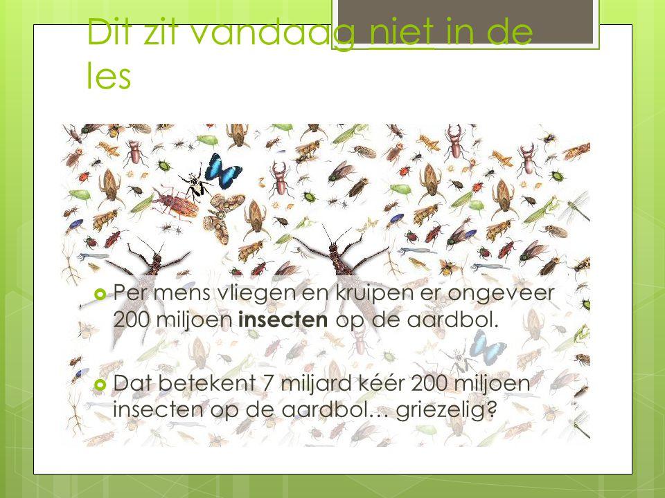 Dieren Er zijn ruim 1,2 miljoen soorten dieren!!.