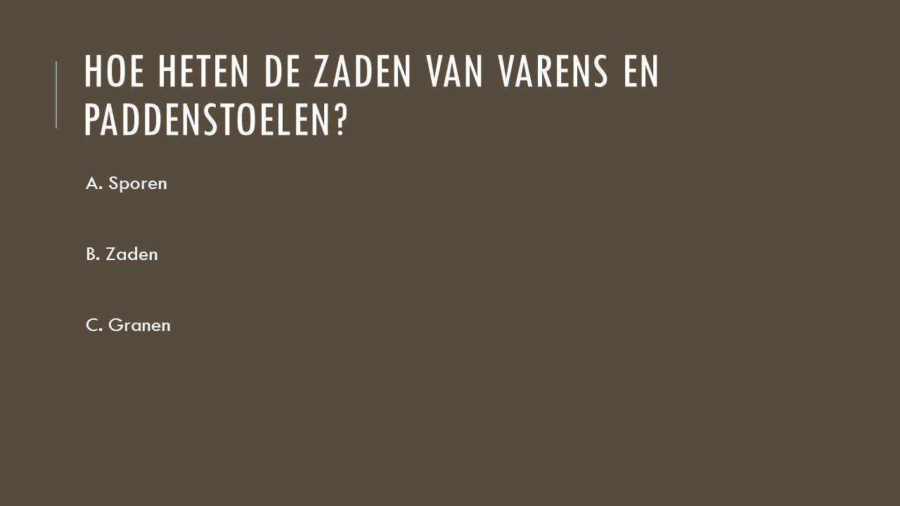 HOE HETEN DE ZADEN VAN VARENS EN PADDENSTOELEN? A. Sporen B. Zaden C. Granen