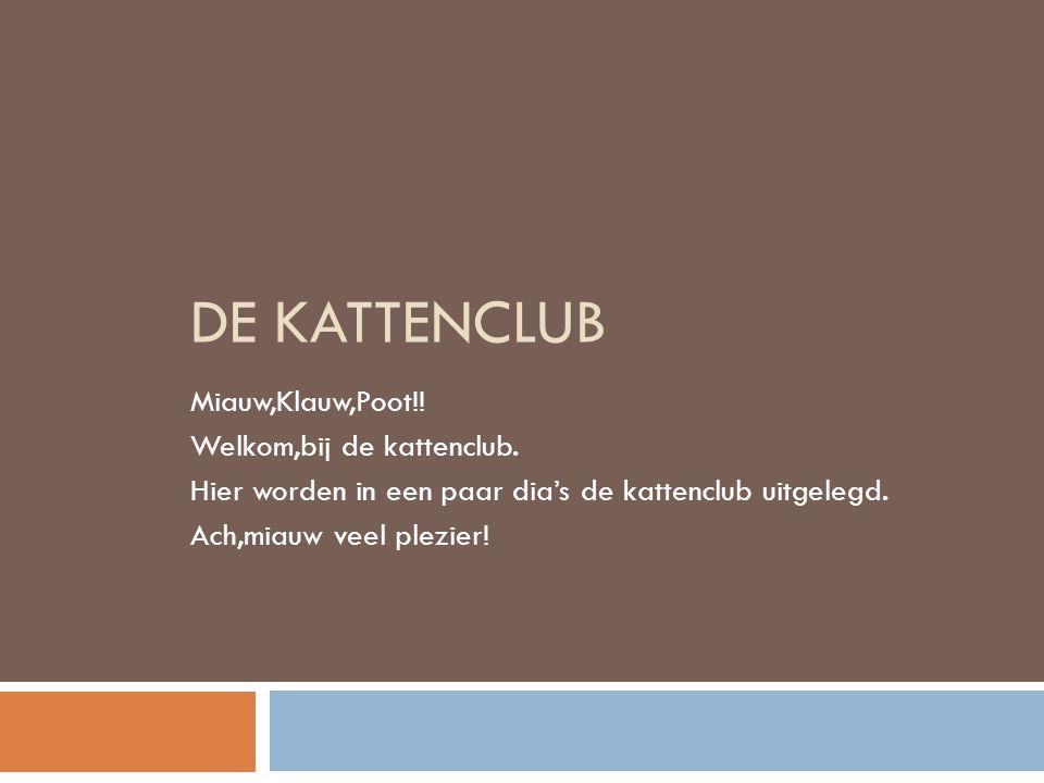 .. DE KATTENCLUB!