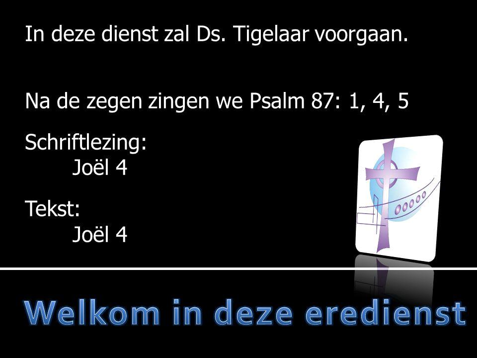  Moment van stilte  Votum en zegengroet  Psalm 87: 1, 4, 5  Wet  Liedboek 285: 1, 3, 4  Gebed  Joël 4  Gezang 117  Preek  Psalm 48: 3, 4  Gebed  Collecte  Gezang 139: 4, 6  Zegen Mededelingen