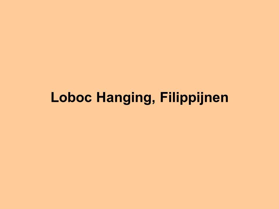 Loboc Hanging, Filippijnen