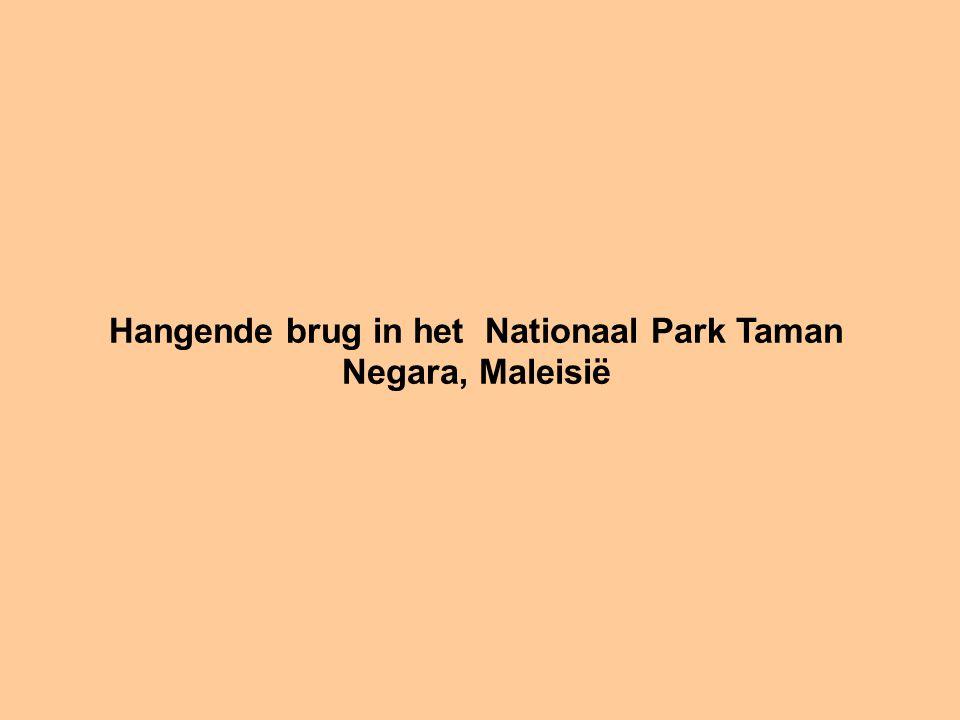 Hangende brug in het Nationaal Park Taman Negara, Maleisië