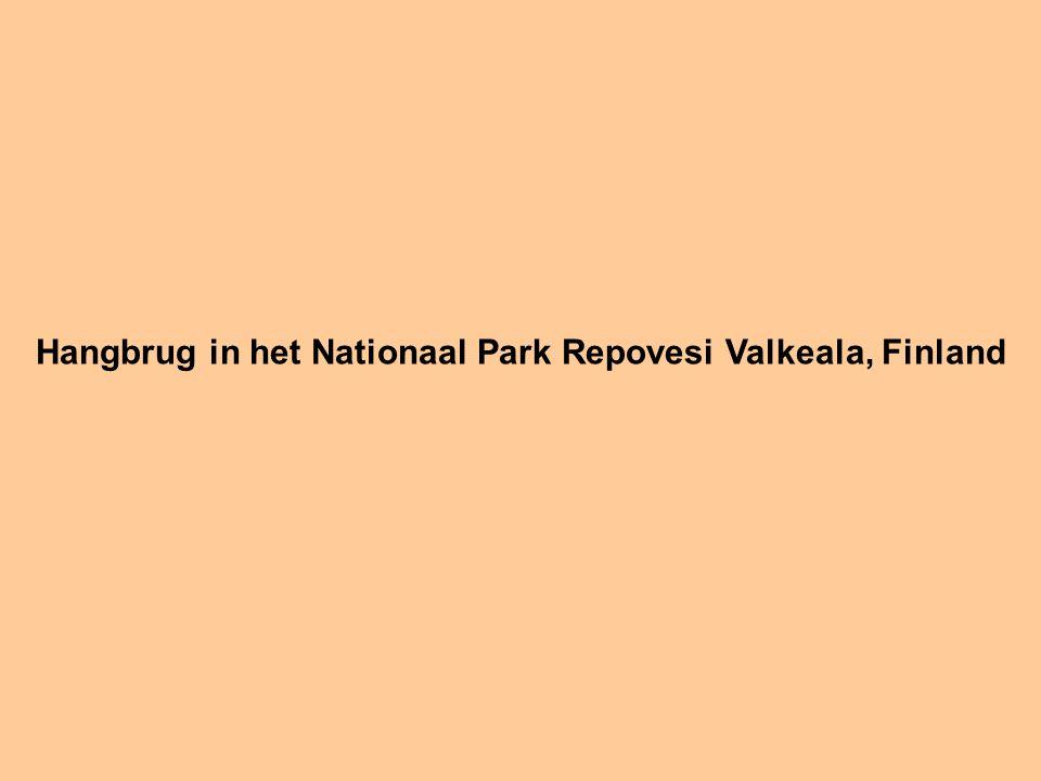 Hangbrug in het Nationaal Park Repovesi Valkeala, Finland