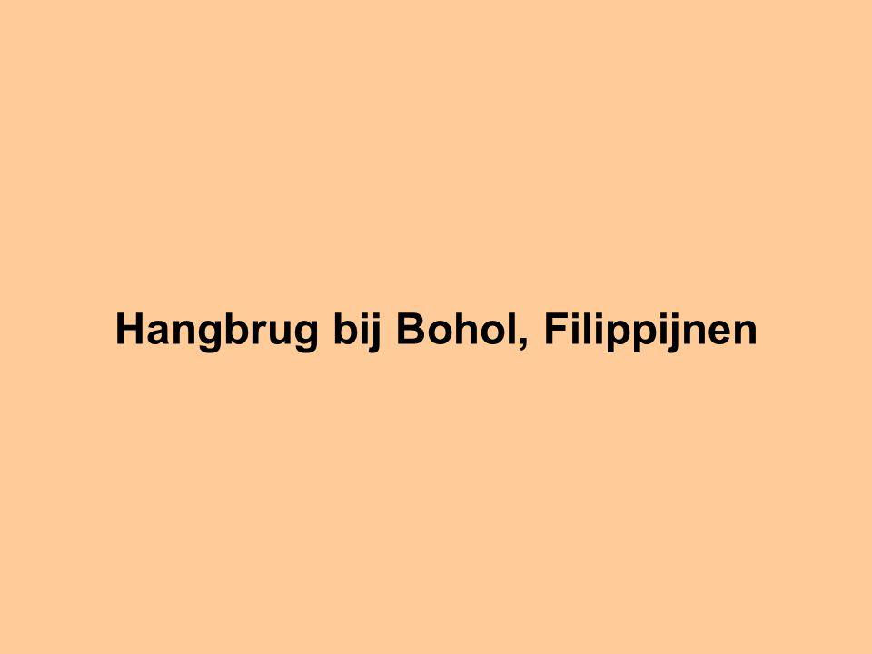 Hangbrug bij Bohol, Filippijnen