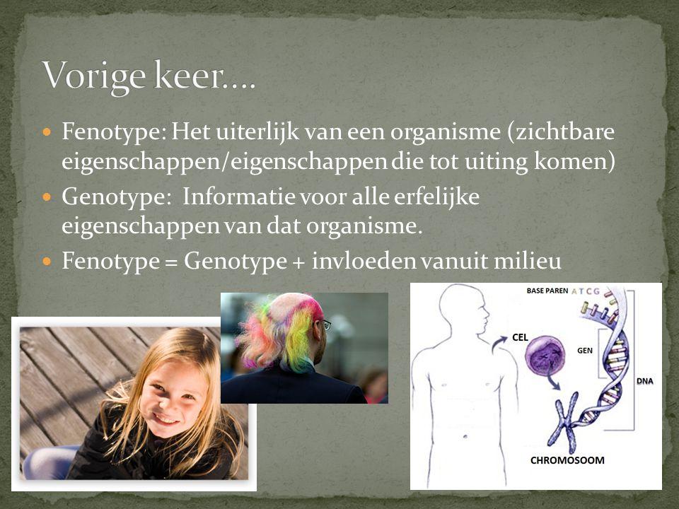 Fenotype: Het uiterlijk van een organisme (zichtbare eigenschappen/eigenschappen die tot uiting komen) Genotype: Informatie voor alle erfelijke eigens