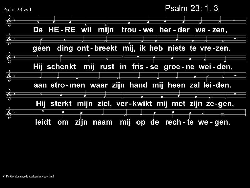 Psalm 23: 1, 3