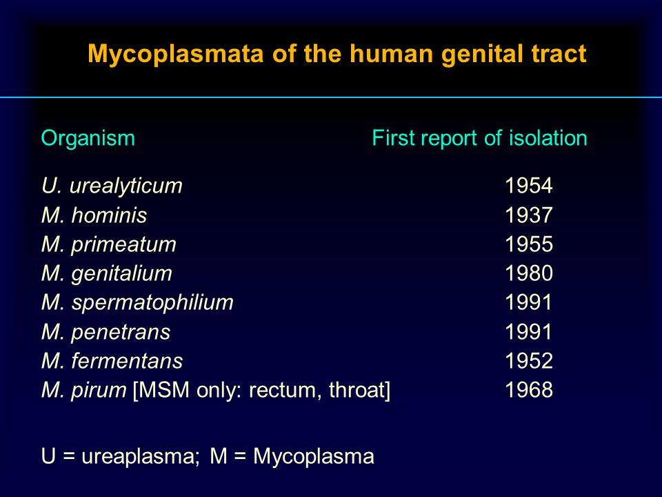 Mycoplasmata of the human genital tract OrganismFirst report of isolation U.