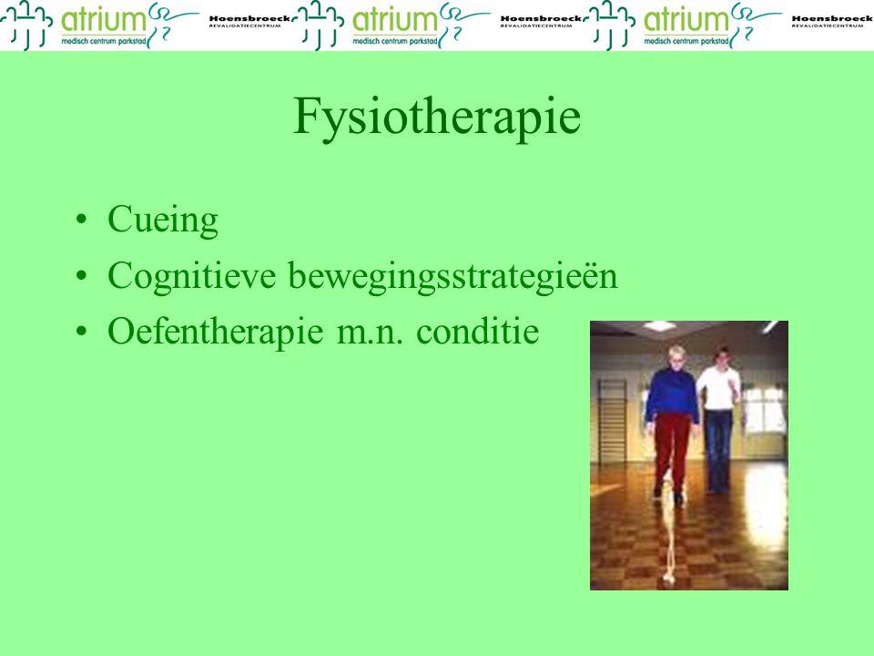 Fysiotherapie Cueing Cognitieve bewegingsstrategieën Oefentherapie m.n. conditie