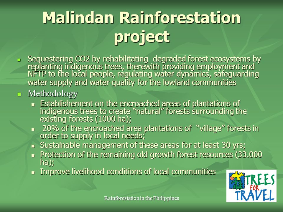 Rainforestation in the Philippines
