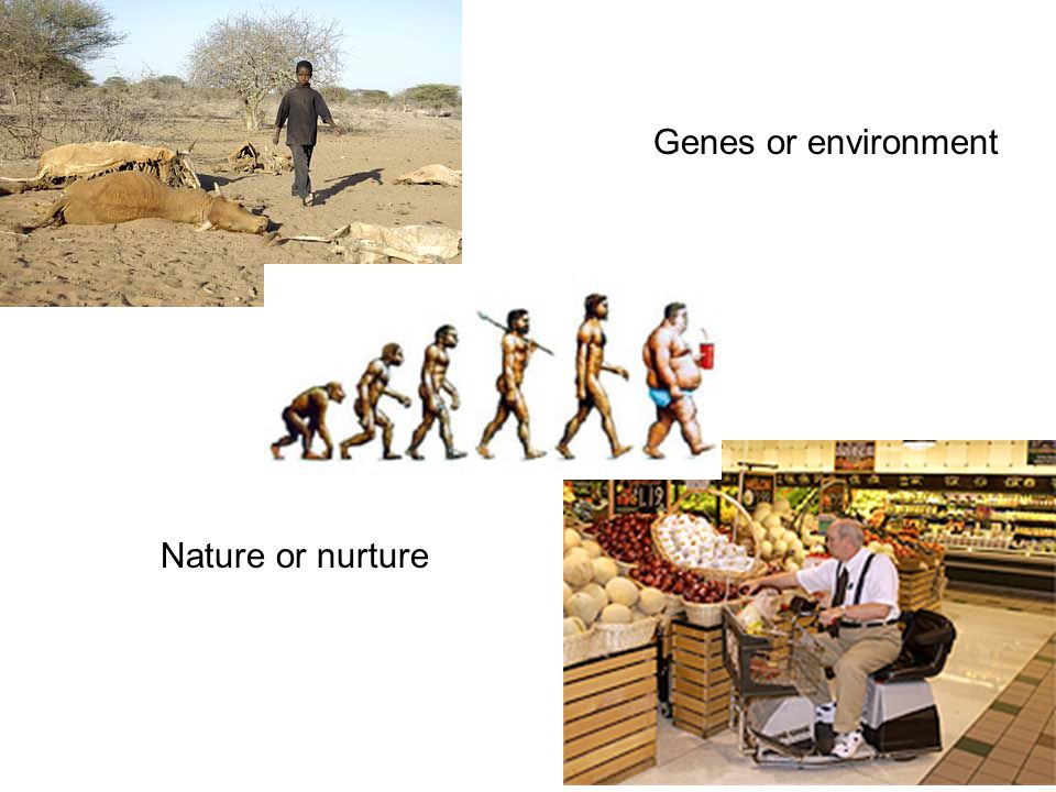 Nature or nurture Genes or environment