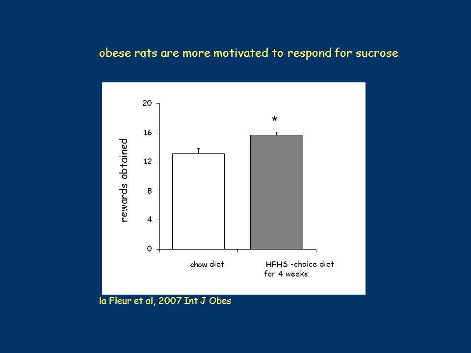 obese rats are more motivated to respond for sucrose rewards obtained * for 4 weeks -choice diet diet la Fleur et al, 2007 Int J Obes