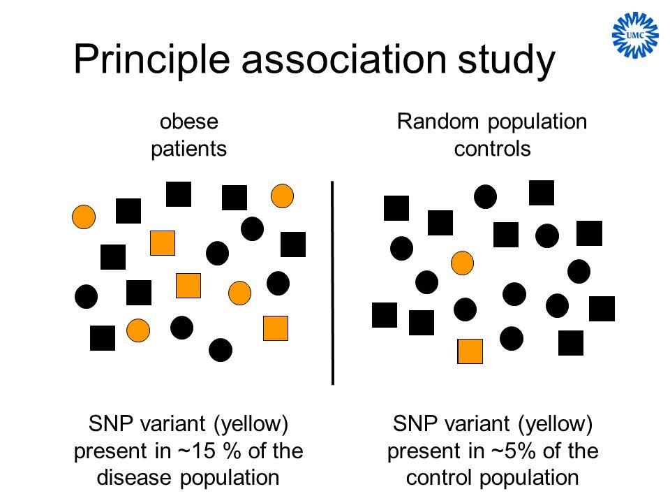 * * * * Genetic variation of the human leptin (receptor) genes affects snacking behavior