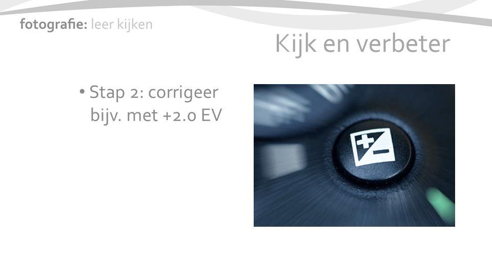 Kijk en verbeter Stap 2: corrigeer bijv. met +2.0 EV