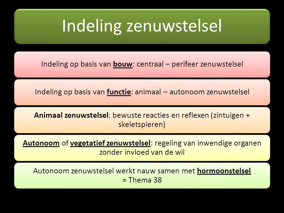 Indeling zenuwstelsel Indeling op basis van bouw: centraal – perifeer zenuwstelselIndeling op basis van functie: animaal – autonoom zenuwstelsel Anima