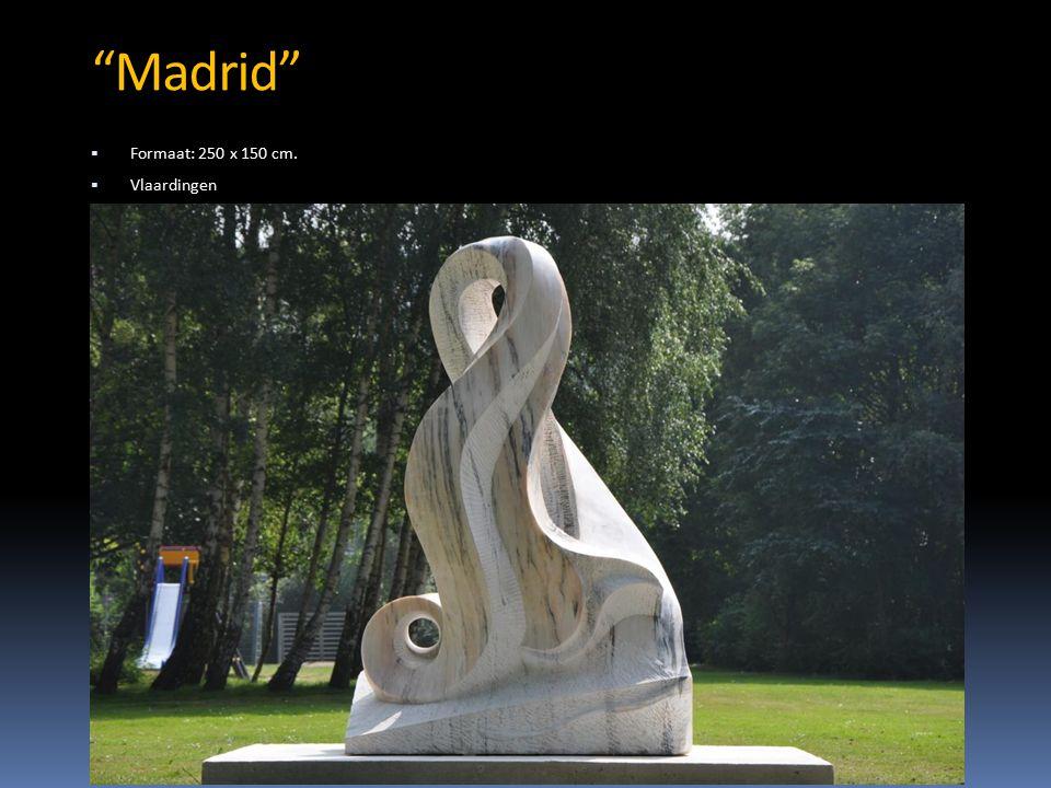 Madrid  Formaat: 250 x 150 cm.  Vlaardingen