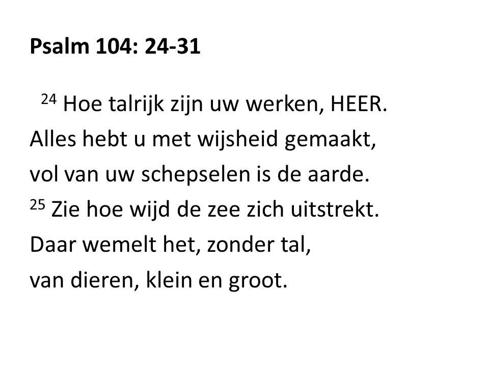 Psalm 104: 24-31 24 Hoe talrijk zijn uw werken, HEER.