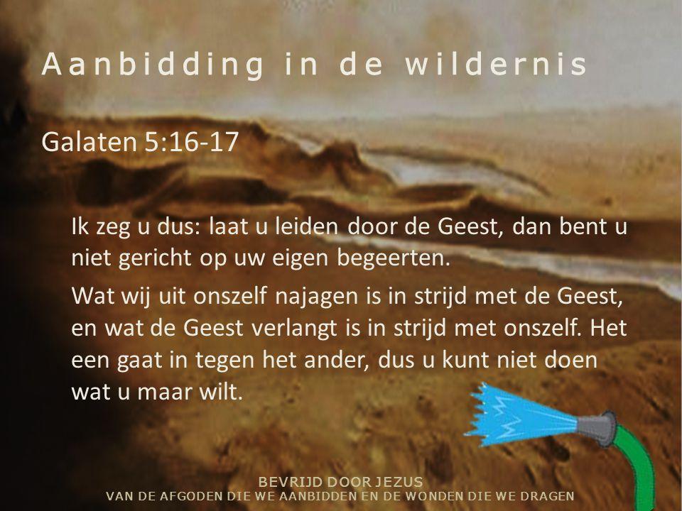 BEVRIJD DOOR JEZUS VAN DE AFGODEN DIE WE AANBIDDEN EN DE WONDEN DIE WE DRAGEN Aanbidding in de wildernis Galaten 5:16-17 Ik zeg u dus: laat u leiden d