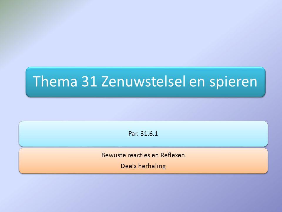 Thema 31 Zenuwstelsel en spieren Par. 31.6.1 Bewuste reacties en Reflexen Deels herhaling