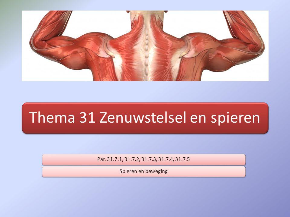 Thema 31 Zenuwstelsel en spieren Par. 31.7.1, 31.7.2, 31.7.3, 31.7.4, 31.7.5Spieren en beweging