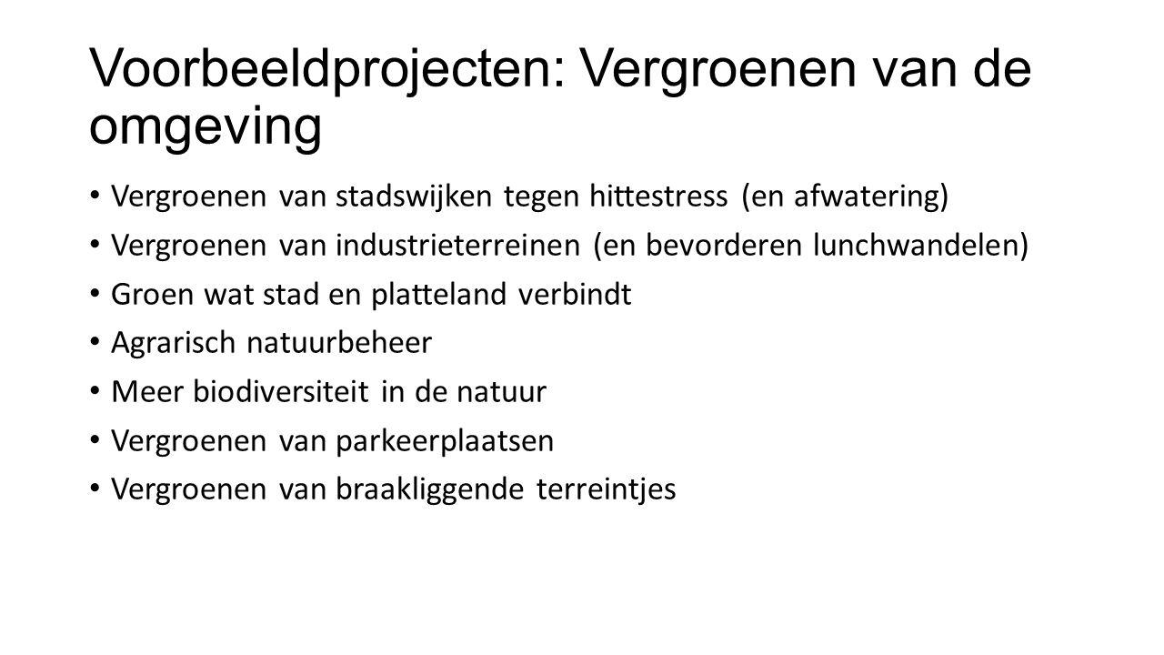 Voorbeeldprojecten: Vergroenen van de omgeving Vergroenen van stadswijken tegen hittestress (en afwatering) Vergroenen van industrieterreinen (en bevo
