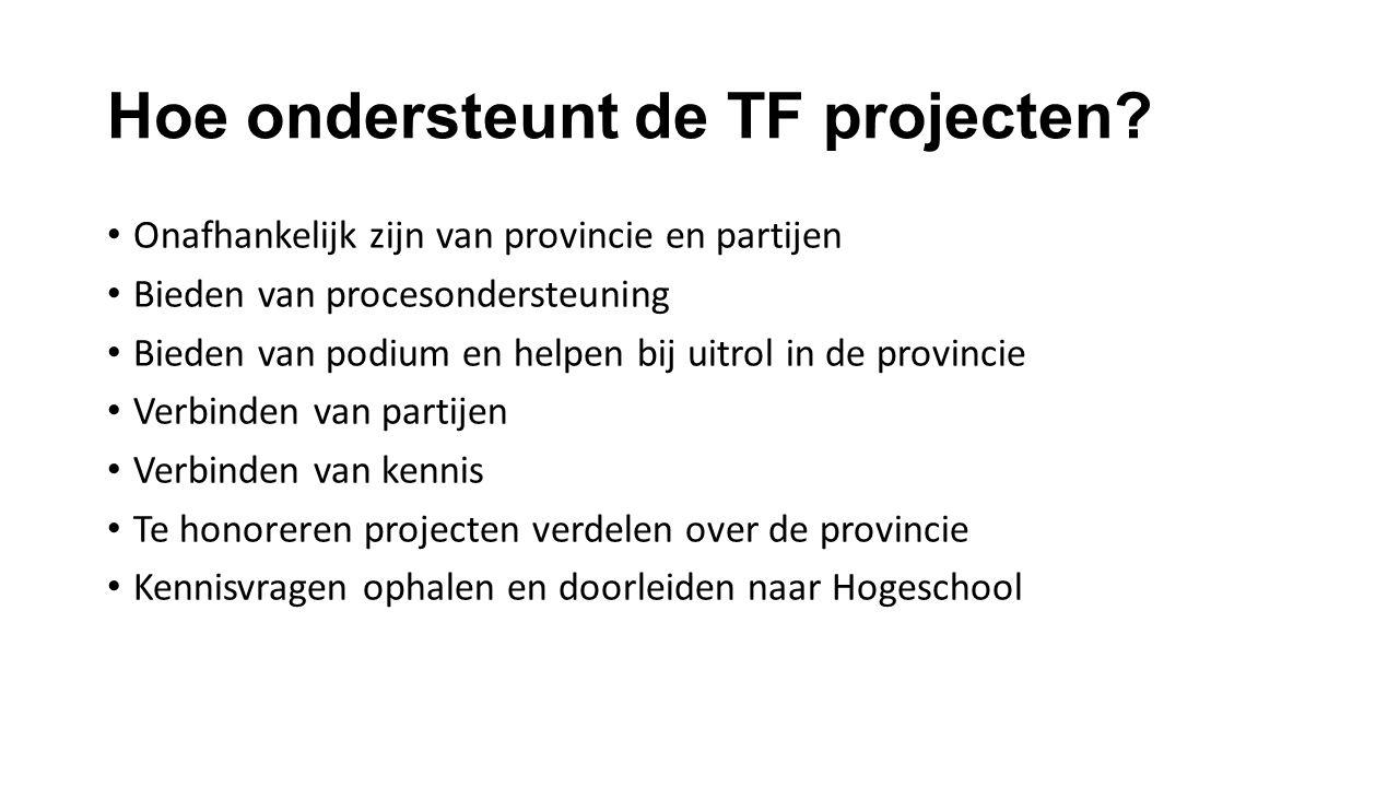 Hoe ondersteunt de TF projecten? Onafhankelijk zijn van provincie en partijen Bieden van procesondersteuning Bieden van podium en helpen bij uitrol in