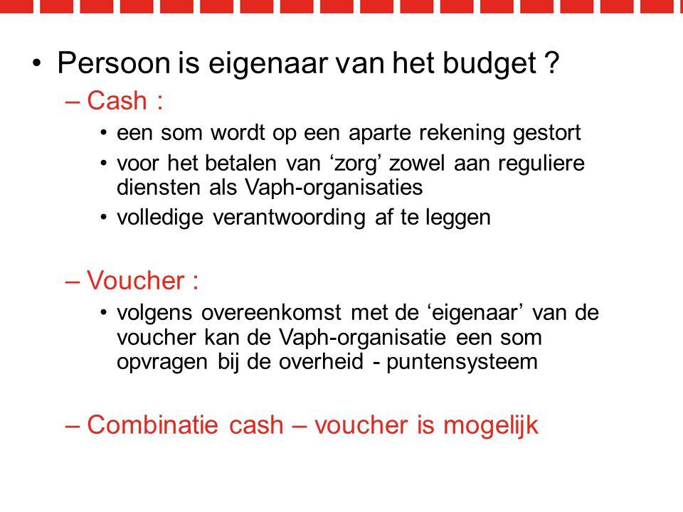 Persoon is eigenaar van het budget .