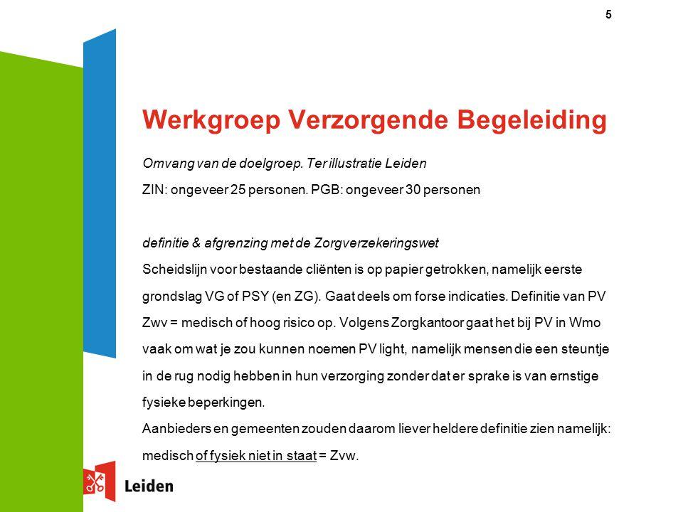Werkgroep Verzorgende Begeleiding Omvang van de doelgroep. Ter illustratie Leiden ZIN: ongeveer 25 personen. PGB: ongeveer 30 personen definitie & afg