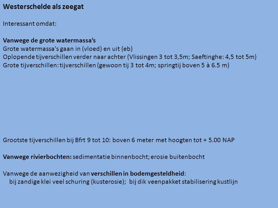 Westerschelde als zeegat Interessant omdat: Vanwege de grote watermassa's Grote watermassa's gaan in (vloed) en uit (eb) Oplopende tijverschillen verder naar achter (Vlissingen 3 tot 3,5m; Saeftinghe: 4,5 tot 5m) Grote tijverschillen: tijverschillen (gewoon tij 3 tot 4m; springtij boven 5 à 6.5 m) Grootste tijverschillen bij Bfrt 9 tot 10: boven 6 meter met hoogten tot + 5.00 NAP Vanwege rivierbochten: sedimentatie binnenbocht; erosie buitenbocht Vanwege de aanwezigheid van verschillen in bodemgesteldheid: bij zandige klei veel schuring (kusterosie); bij dik veenpakket stabilisering kustlijn