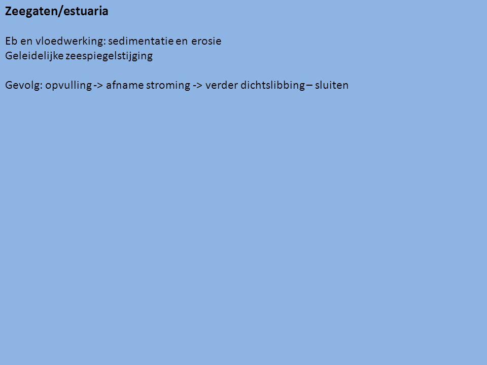 Zeegaten/estuaria Eb en vloedwerking: sedimentatie en erosie Geleidelijke zeespiegelstijging Gevolg: opvulling -> afname stroming -> verder dichtslibbing – sluiten