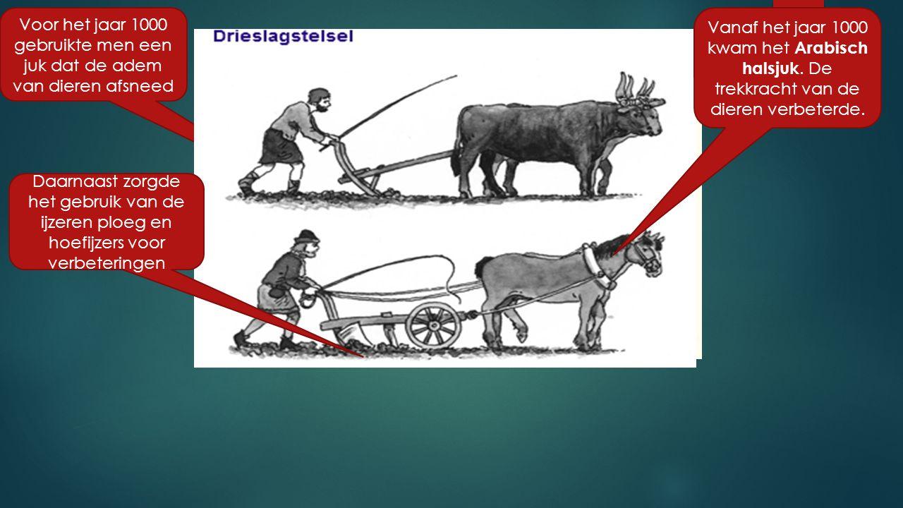 Voor het jaar 1000 gebruikte men een juk dat de adem van dieren afsneed Daarnaast zorgde het gebruik van de ijzeren ploeg en hoefijzers voor verbeteri