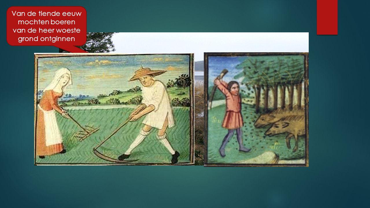 Van de tiende eeuw mochten boeren van de heer woeste grond ontginnen